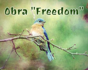 Obra Freedom